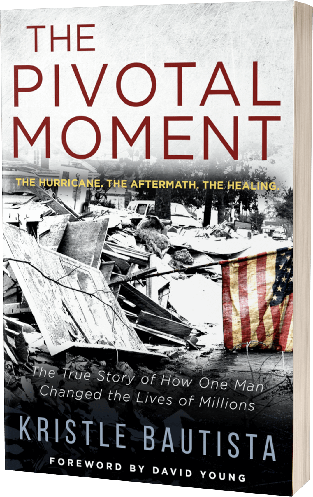 THE PIVOTAL MOMENT Book Cover